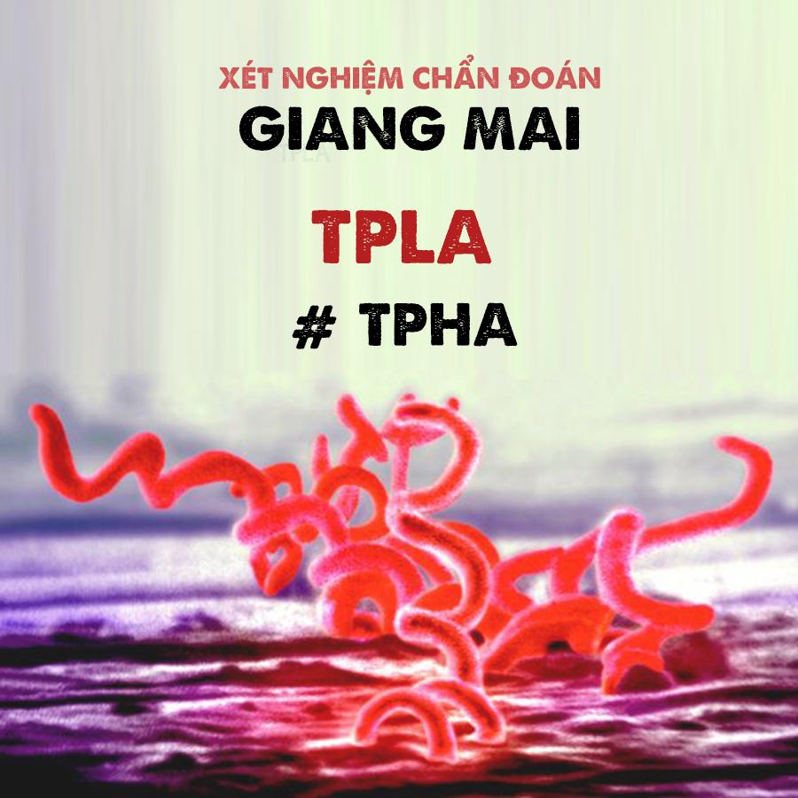 Sự khác nhau trong chẩn đoán Giang mai giữa TPHA và TPLA, bạn cần biết?